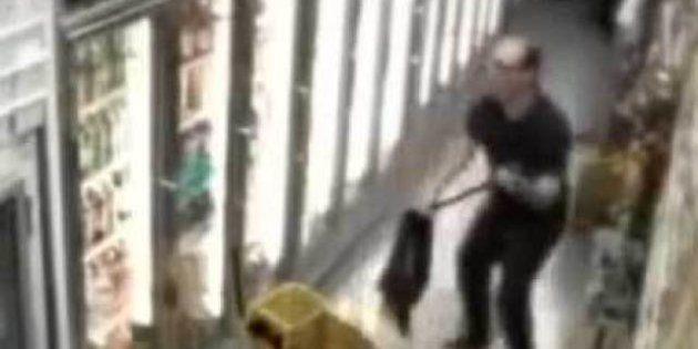 VIDÉO. Les caméras de surveillance captent aussi de jolies