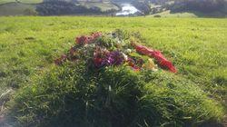 Funérailles écologiques: une nouvelle manière d'adopter un comportement respectueux de