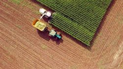Pourquoi les drones sont idéaux pour préserver
