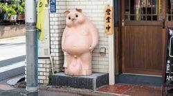 「ブタに改造されたタヌキ」にネット騒然。東京・蒲田のとんかつ店に設置経緯を聞いたところ…