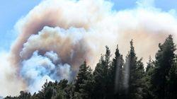 Μεγάλη πυρκαγιά σε δασική έκταση στη