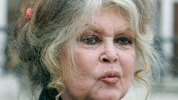 Bardot qualifie les Réunionnais de