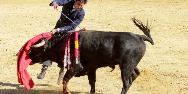Los toros, al revés que la compresa: