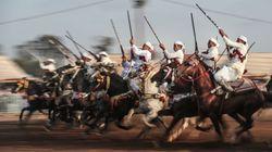La Tbourida candidate pour rejoindre le patrimoine culturel immatériel de