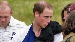 La emotiva historia tras la adopción de Lupo, el perro de los duques de