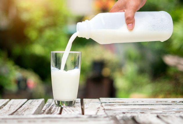 Le prix d'un litre de lait pourrait atteindre 2500 millimes selon la Chambre nationale des producteurs...