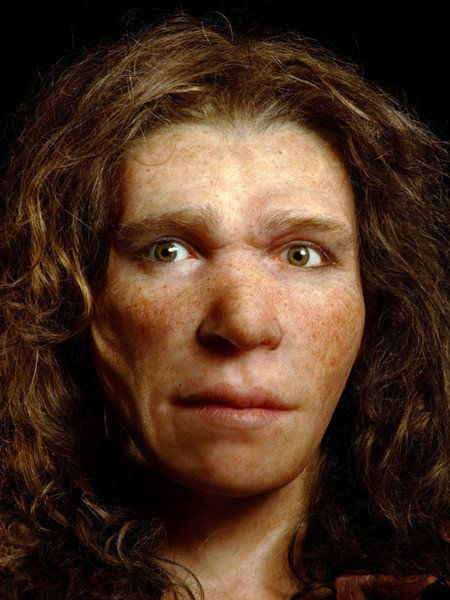 Neanderthal Eyes Brown In Two Specimens, Controversial DNA