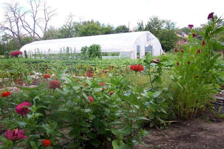 Peck Produce Are Taking Their Detroit Urban Farm To The Next Level