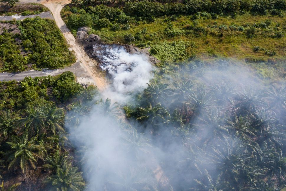 An aerial shot of a fire on a palm oil estate in Kuala