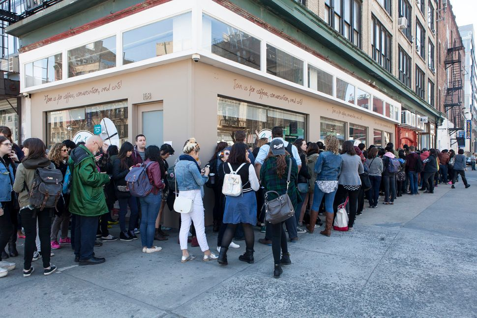 The line to get into the cat cafe was wrapped around the block Friday.