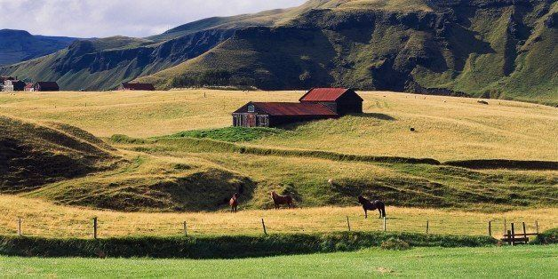 ICELAND - MAY 05: Farm with horses grazing, Kirkjubaejarklaustur, Vestur-Skaftafell, Iceland. (Photo by DeAgostini/Getty Images)