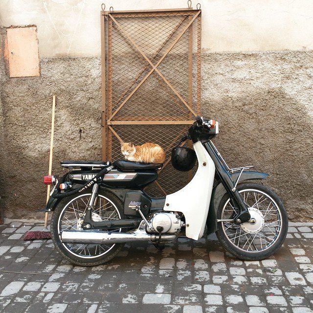 Marrakech, Morocco.