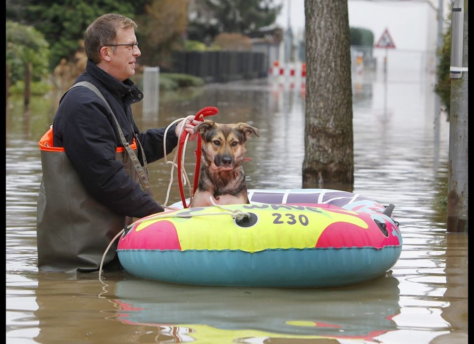 A Koblenz resident guides his dog in a small rubber boat.
