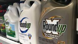 Reconnu coupable de négligence, Monsanto condamné à payer près de 81 millions de dollars à un malade du