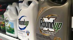 Monsanto condamné à payer près de 81 millions de dollars à un malade du