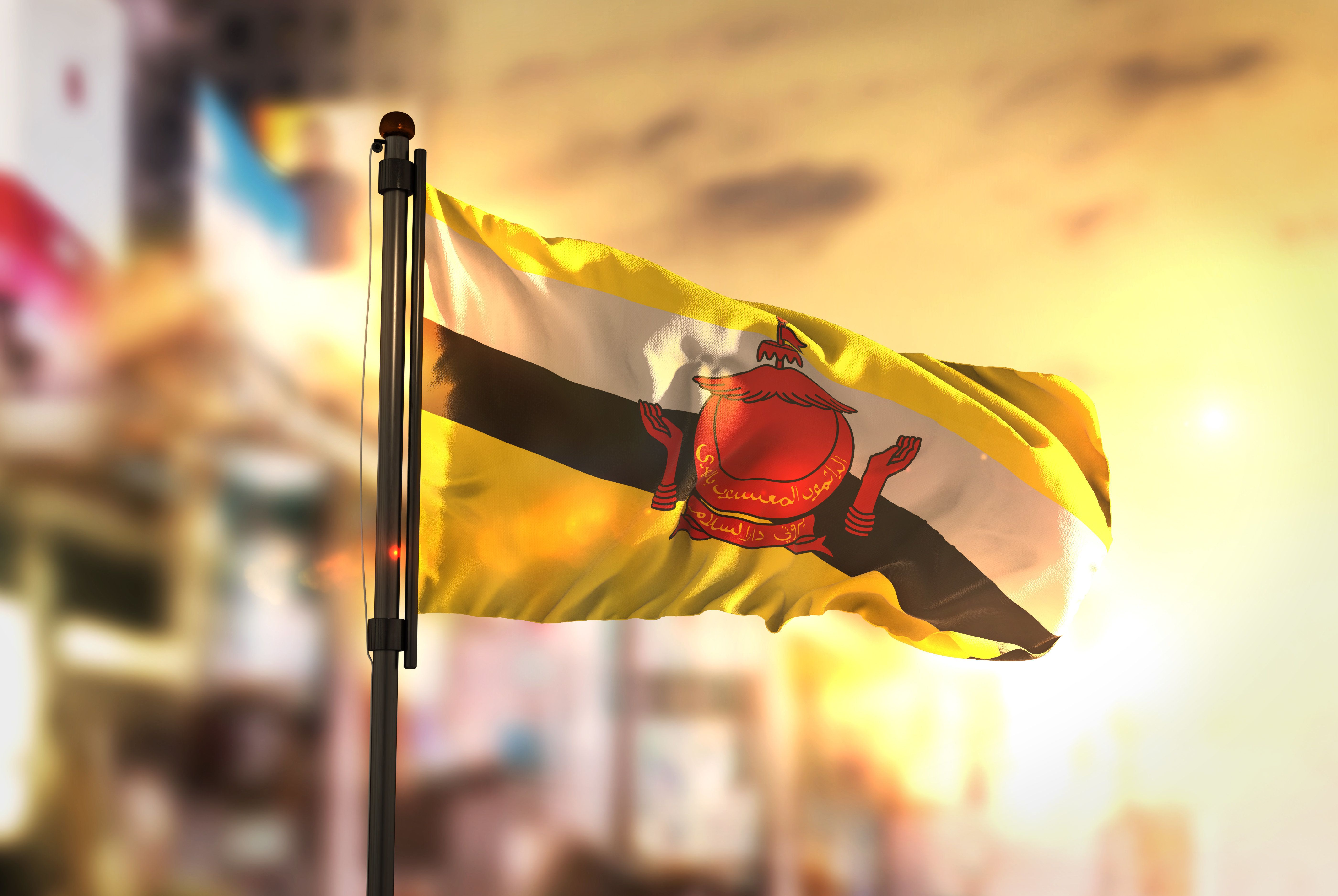 Brunei Flag Against City Blurred Background At Sunrise Backlight