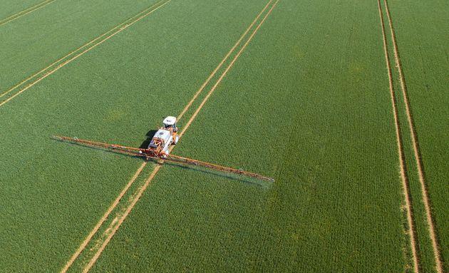 Pesticides being sprayed on