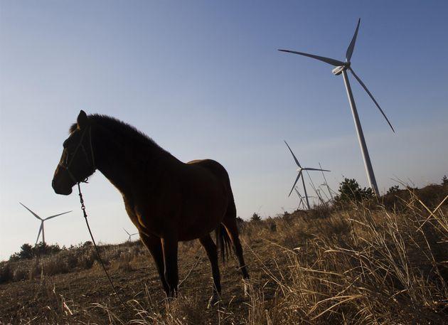 '바람의 섬' 제주는 2030년까지 전기차 100% 보급을 준비