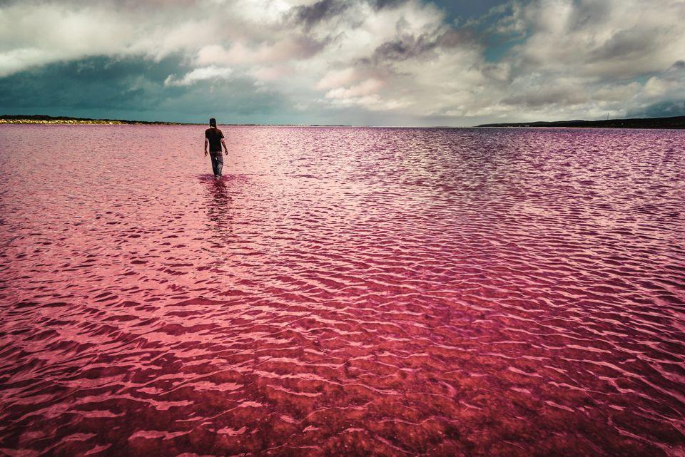 H μαγευτική ροζ λίμνη της Αυστραλίας που τρέλανε τους χρήστες του