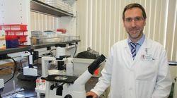 Este es el científico español que dirigirá la mayor organización de investigación contra el cáncer del