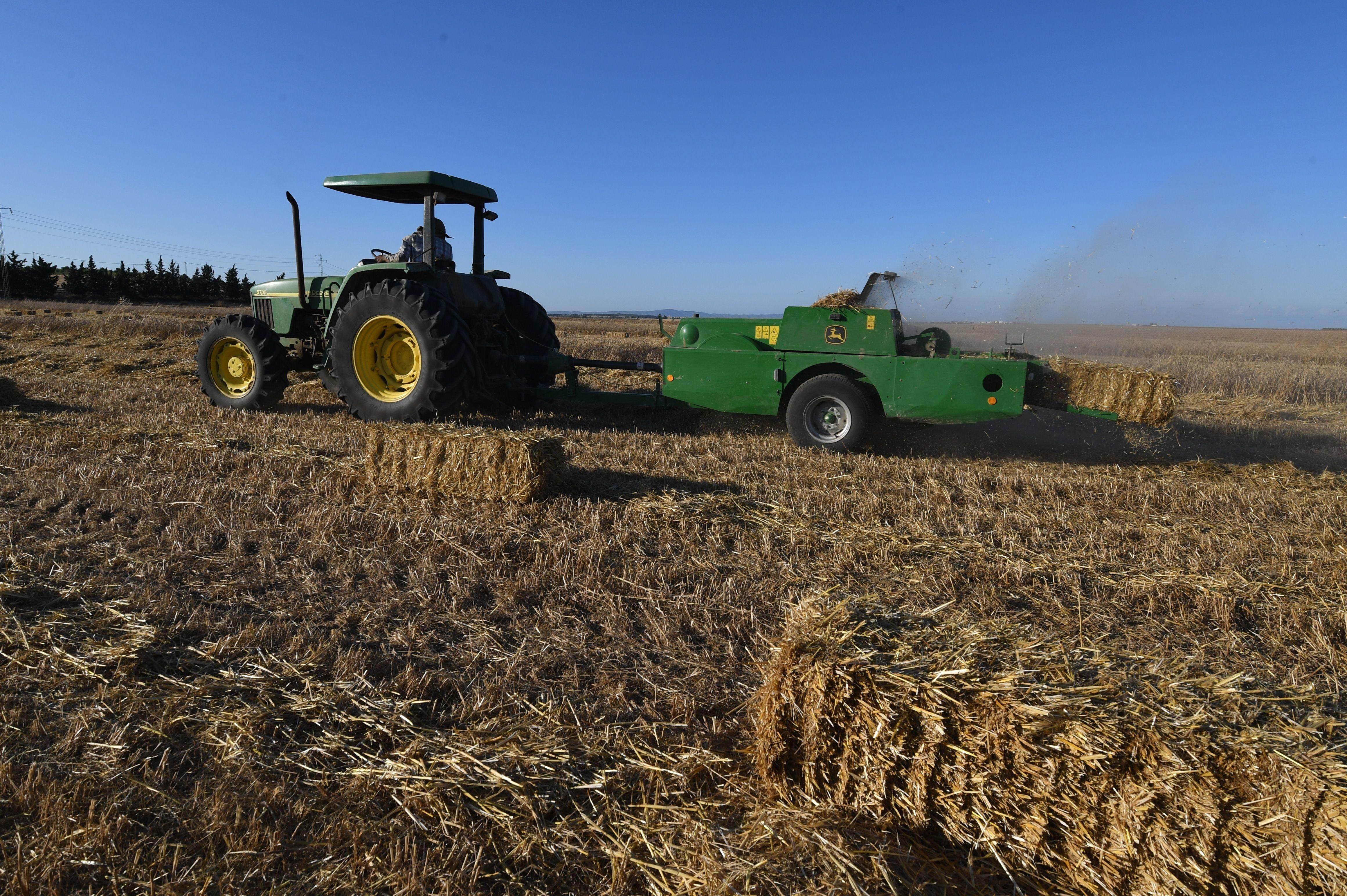 L'UTAP et la SYNAGRI fustigent l'inaction du gouvernement face à un secteur agricole en pleine