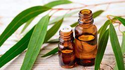 Joyeuses fêtes : ces huiles essentielles vous aideront à digérer les gros