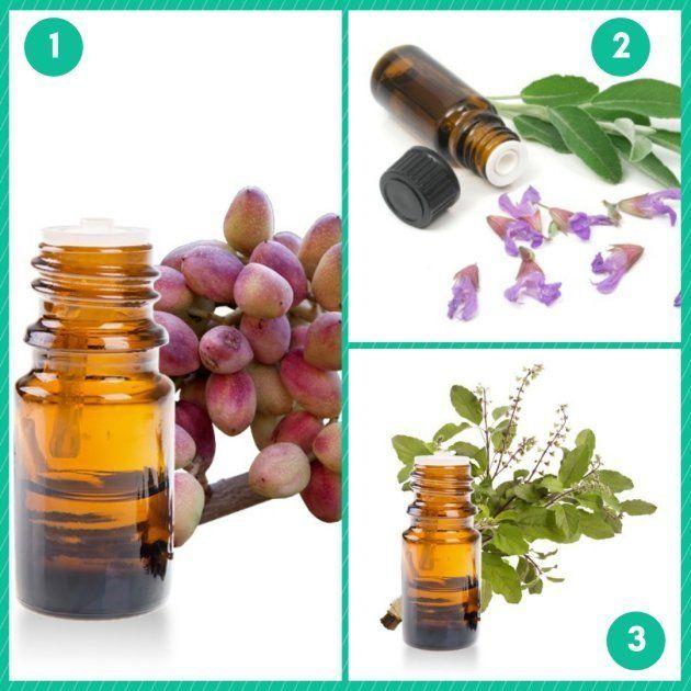 Trois plantes gagnantes contre les douleurs liées à l'endométriose, pour Pauline Dumail,