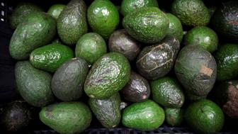 "Avocados are on display for sale at the wholesale market ""Central de Abastos"" in Mexico City, Mexico January 11, 2019. Picture taken January 11, 2019. REUTERS/Daniel Becerril"