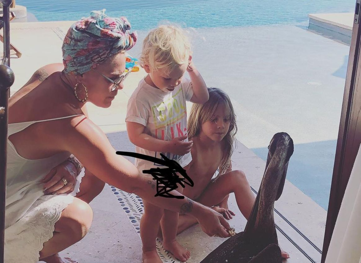 Pink Goes Off On Haters For Bashing A Photo Of Her Son Without A