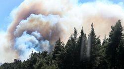Αχαΐα: Μεγάλη φωτιά σε δασική περιοχή της
