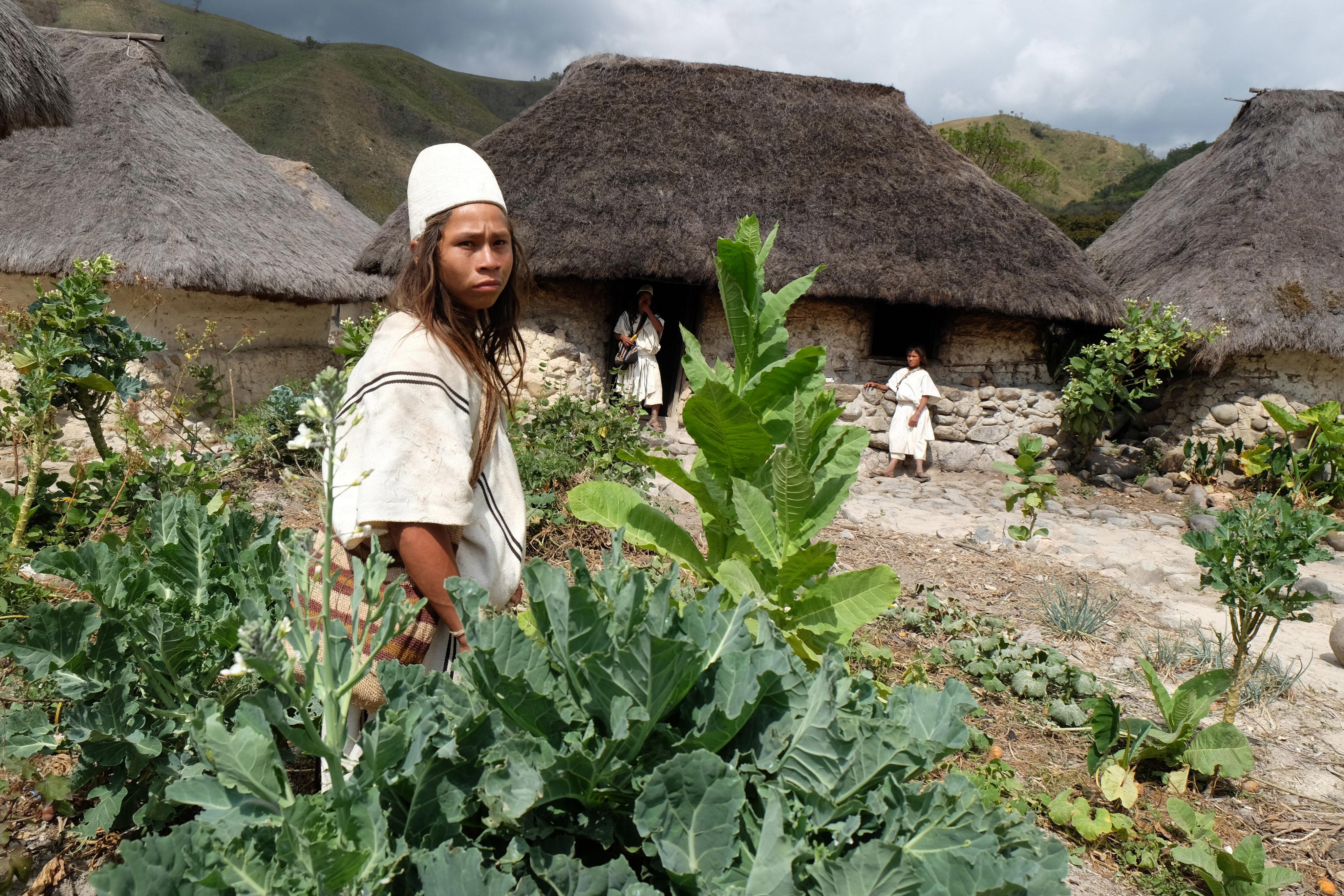 Οι αρχαίοι φύλακες της γης: Μπορεί αυτή η απομονωμένη φυλή ιθαγενών να σώσει τον