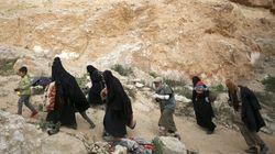 Une grand-mère marocaine bloquée en Syrie après avoir voulu récupérer ses
