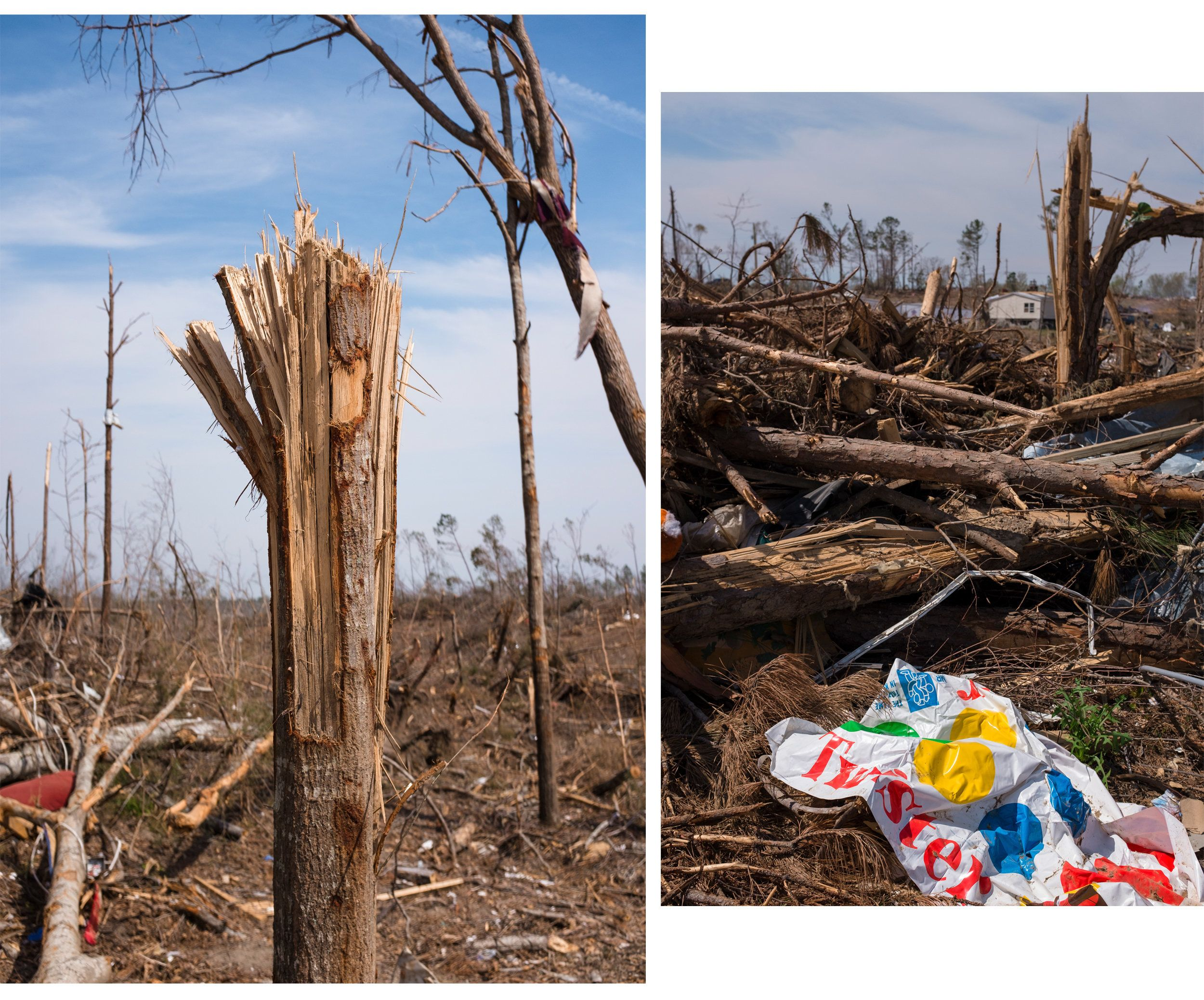 (Left) Trees were ripped apart as if they had been exploded by dynamite in Alabama's Lee County. (Right) A bit of irony -- th