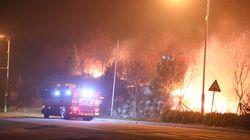 [속보] 강원 산불로 사망 2명...'양간지풍 탓에 불길 안