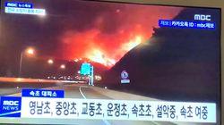 강원지역 산불 재난상황 확인 연락처 및 바로가기
