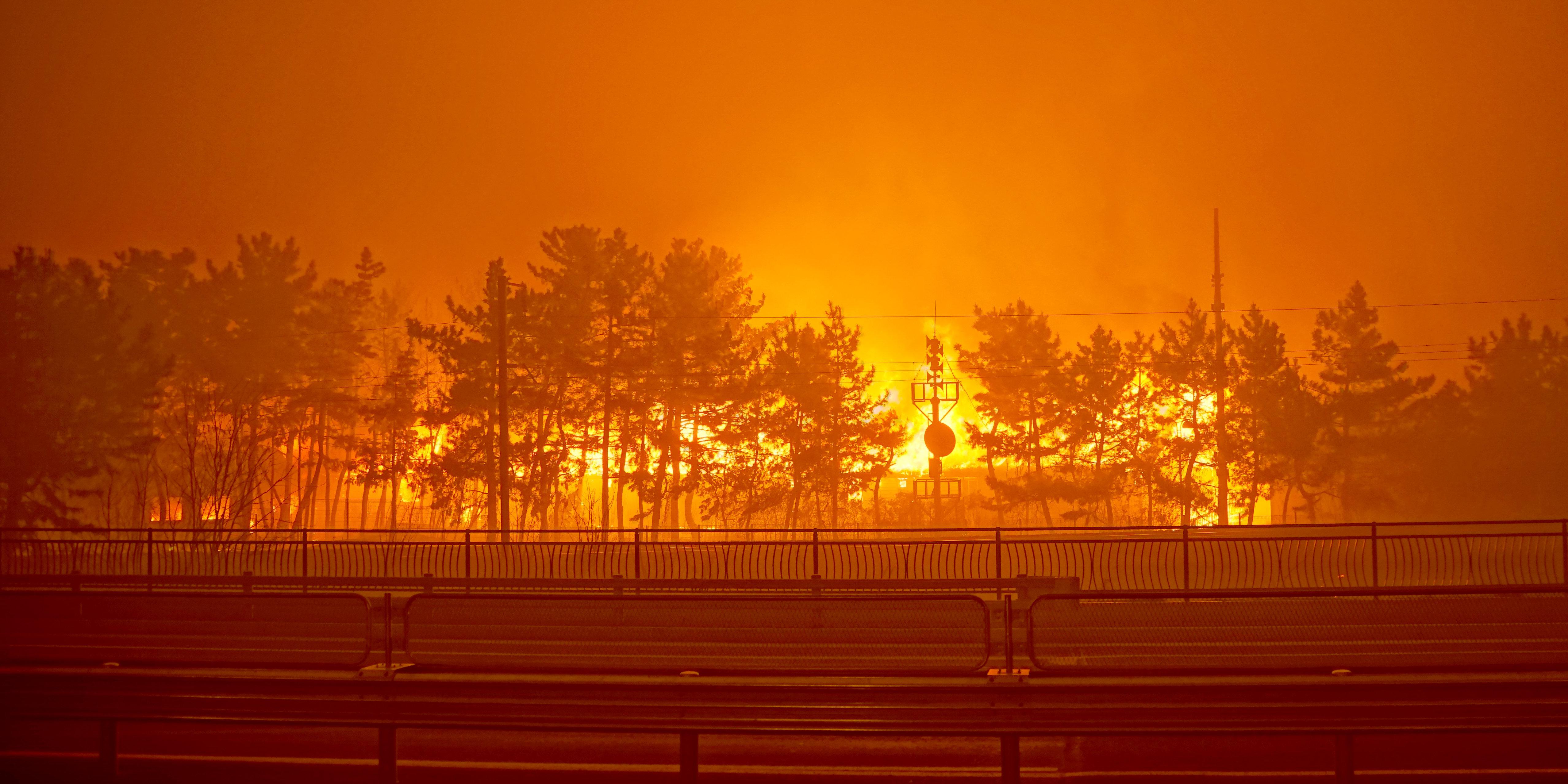 강원도 고성 산불에 화재 대응 최고 단계가