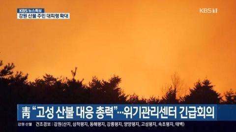 강원 산불 지상파 '재난 특보'에는 수어 통역이