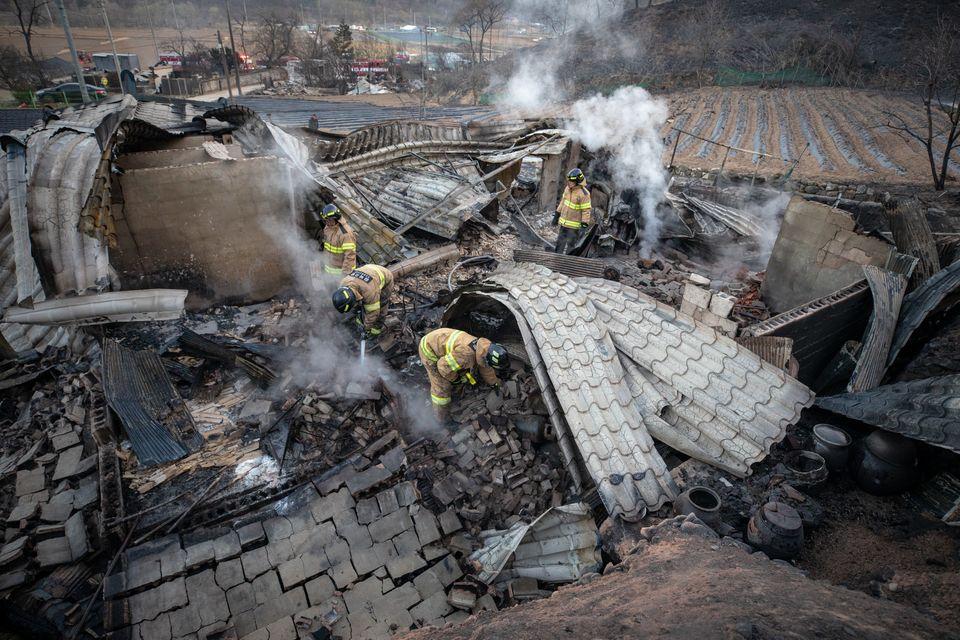 고성·속초 일대에 산불이 이어진 5일 강원도 강릉시 옥계면의 한 민가에서 소방대원들이 잔불 진화작업을 하고 있다.