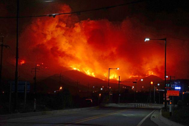 강원지역에 강풍으로 산불이 잇달아 발생한 지난 4일 오후 11시46분쯤 강릉시 옥계면 남양리 인근 야산에서도 불이 나 시뻘건 불길이 산림을 휘감고