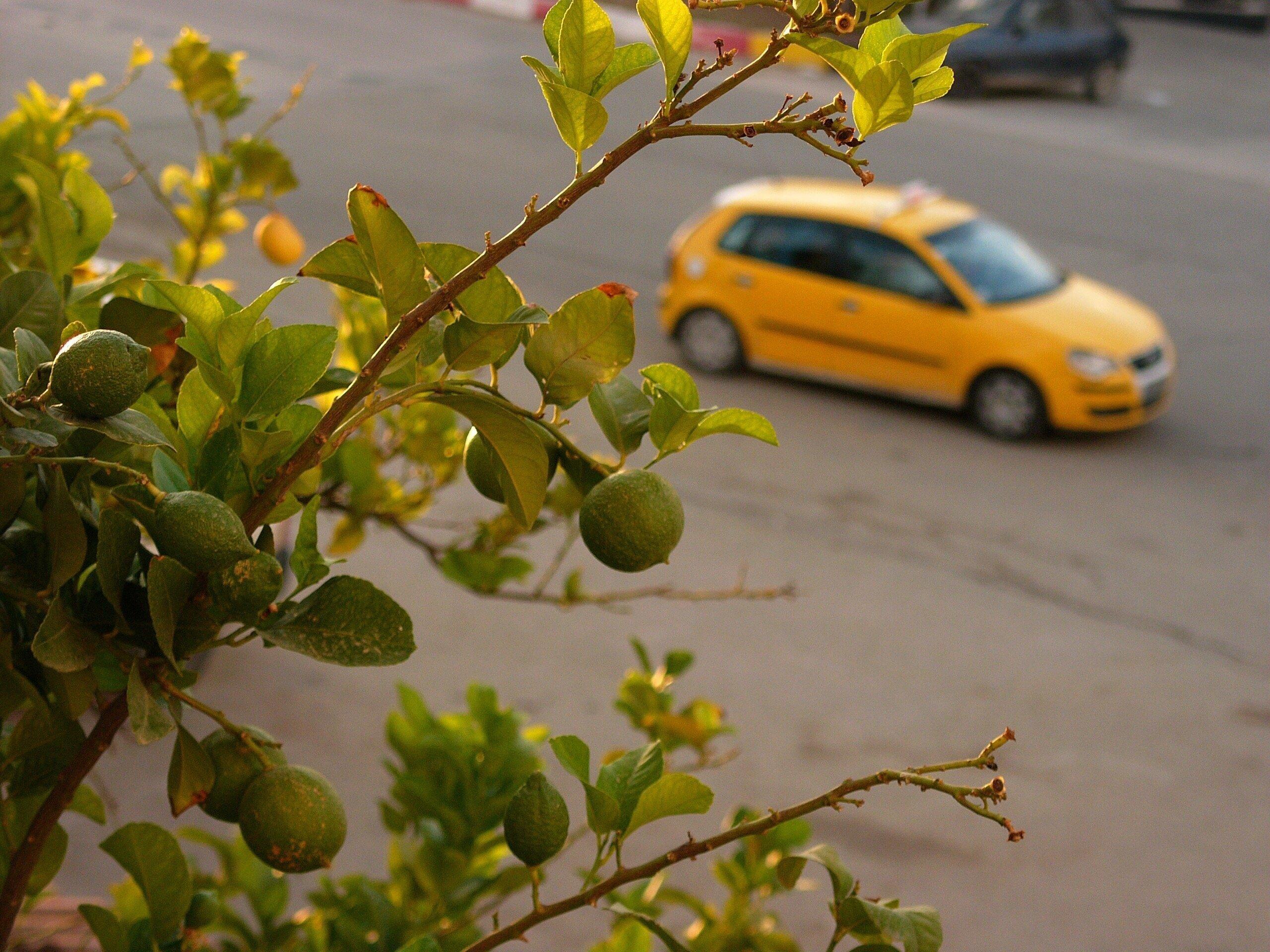 Les mouvements de protestation des taxis et louages annulés, hausse des tarifs de 8% à partir de janvier