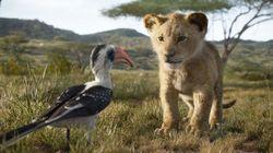 Acabou a espera! Trailer de 'O Rei Leão' mostra vários personagens queridos do clássico da
