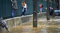 Βραζιλία: Αλιγάτορες καϊμάν δραπέτευσαν και κυκλοφορούν ελεύθεροι σε