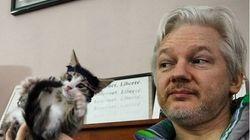 '위키리크스' 어산지가 키우던 고양이의