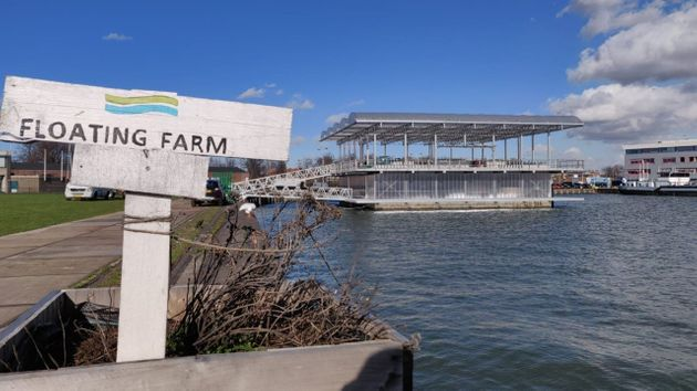 The world's first floating farm in Rotterdam, The Netherlands.