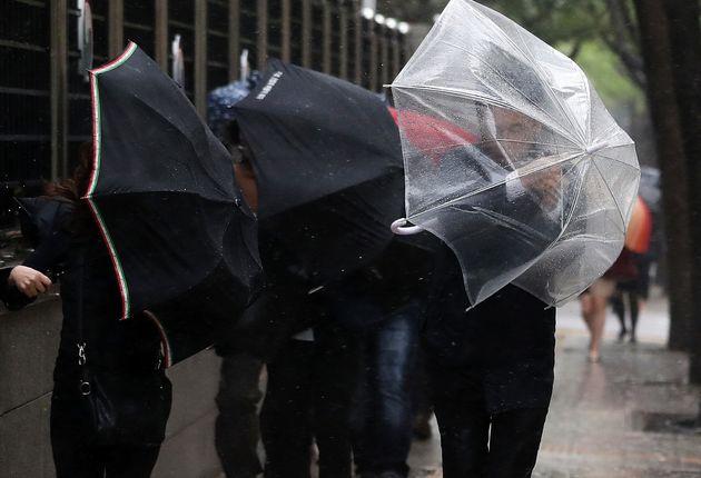 14일 전국에 초속 17m 이상 강풍과 함께 비가