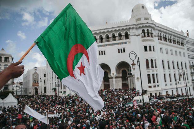 Des universitaires appellent les Algériens à former des comités