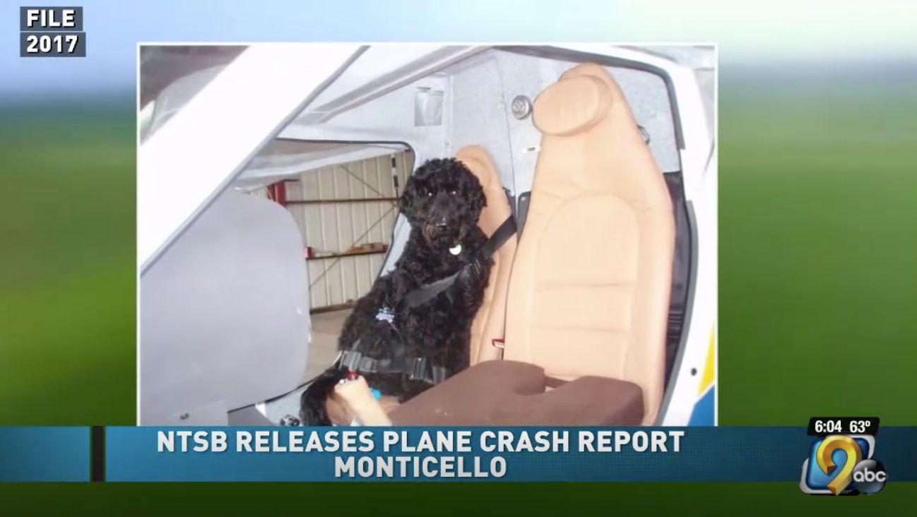 pilot death dog