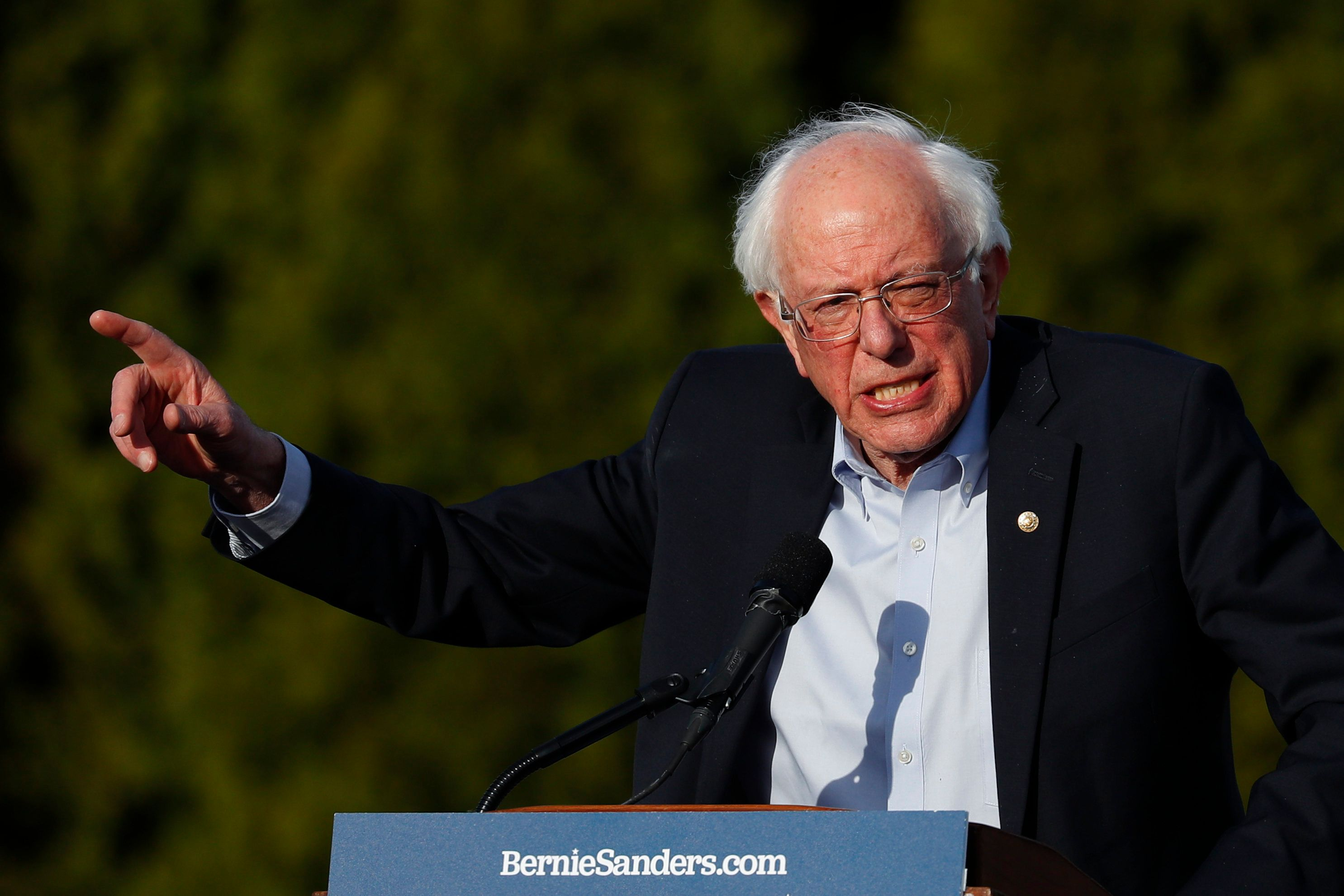 Democratic presidential candidate Sen. Bernie Sanders, I-Vt., speaks during a rally in Warren, Mich., Saturday, April 13, 2019. (AP Photo/Paul Sancya)