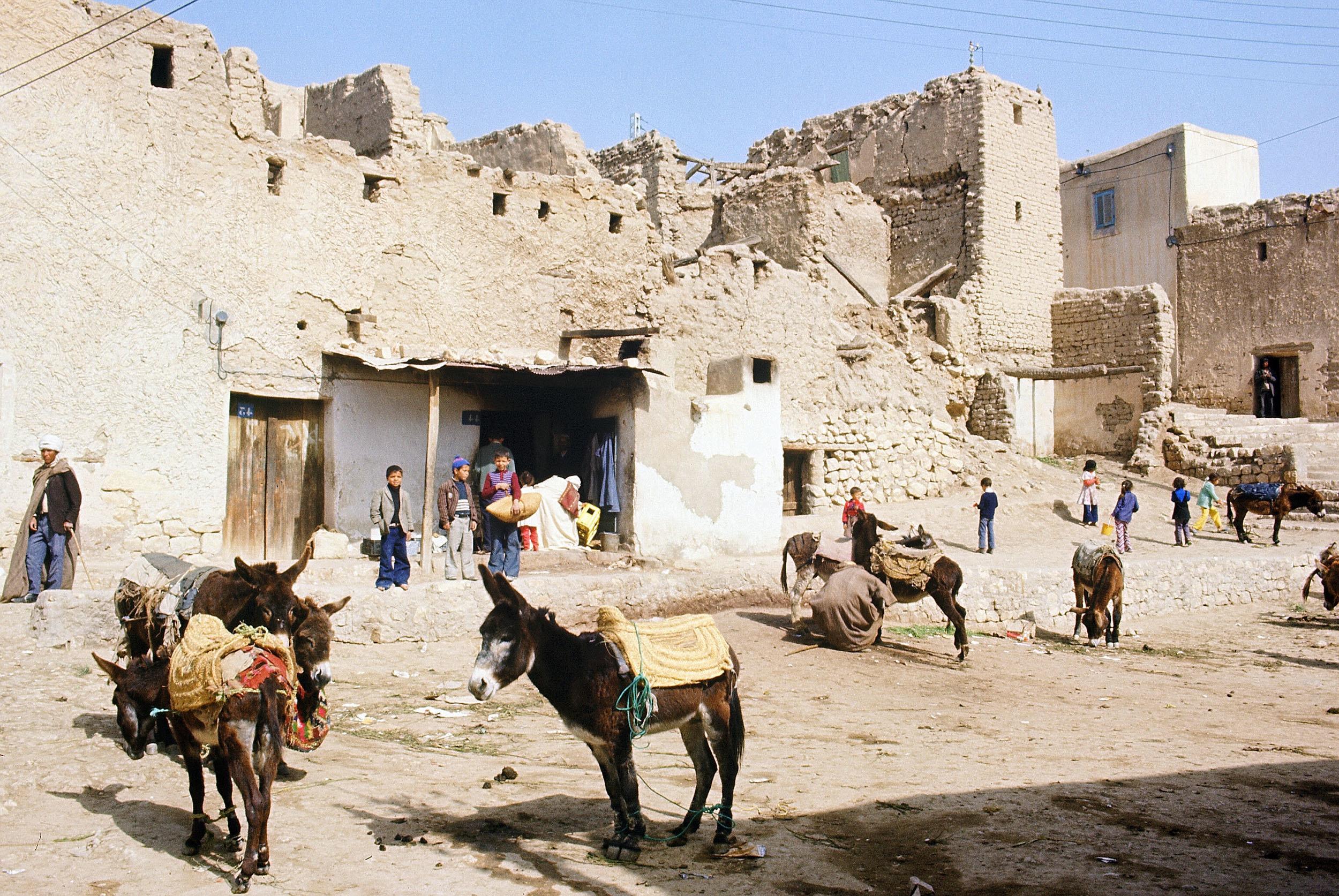BLOG - L'Algérie, ce pays que les jeunes appelés français ont découvert en