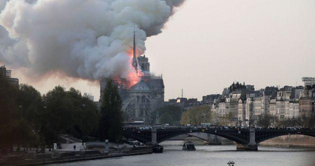 Notre Dame, la compañera, el universo en